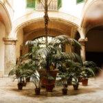 Recorrido por el casco antiguo de Palma de Mallorca